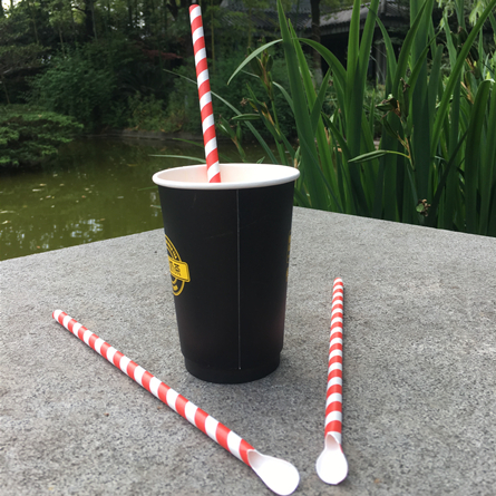 Spoon Shape Paper Straw